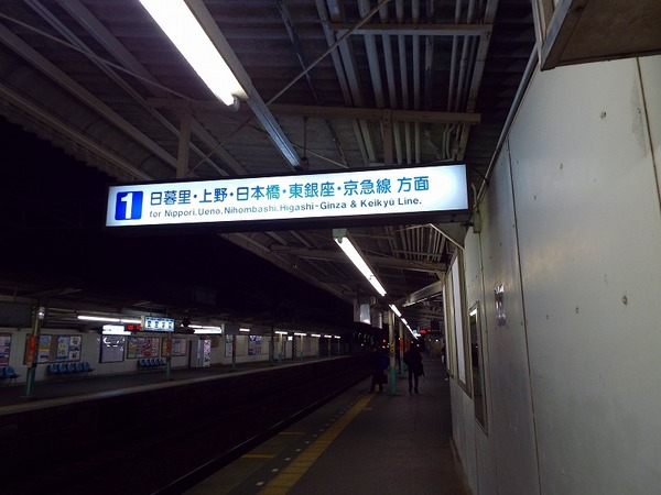 DSCF5761.jpg