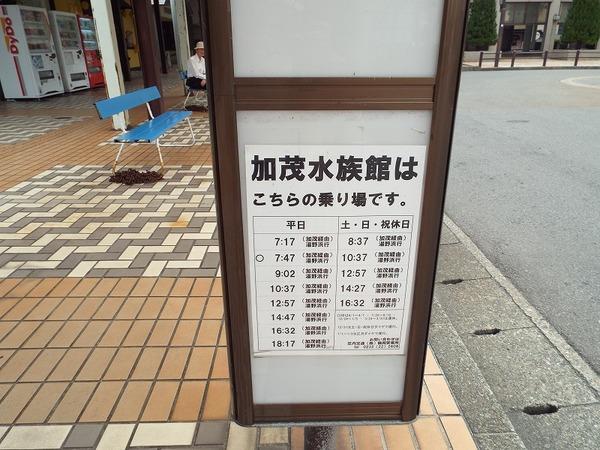 DSCF8255.jpg