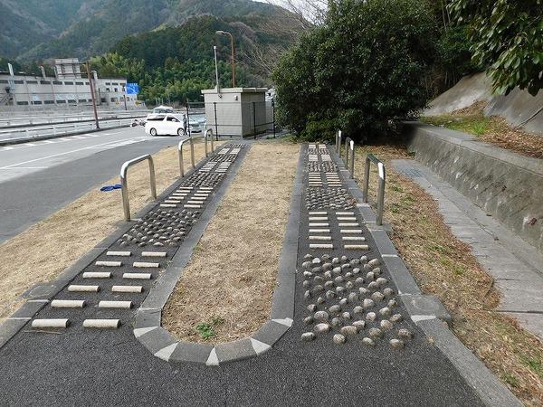 中静岡 (670).jpg